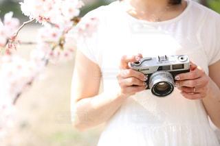 カメラ女子の写真・画像素材[1537309]