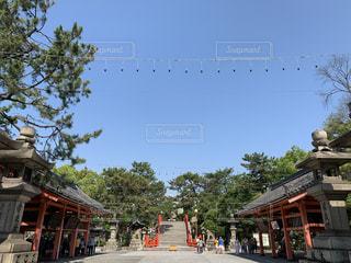 神社空間の写真・画像素材[2283000]