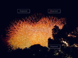 空に花火の写真・画像素材[1373358]