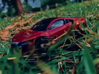 近くに赤い車のアップの写真・画像素材[1373466]