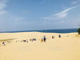 鳥取砂丘の写真・画像素材[1401593]