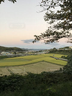 夕暮れの田園風景の写真・画像素材[1519185]