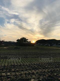 田んぼの夕暮れの写真・画像素材[1600609]