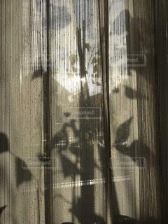カーテンのシルエットの写真・画像素材[1656513]