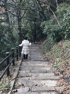 経ヶ岬灯台を目指すの写真・画像素材[1673961]