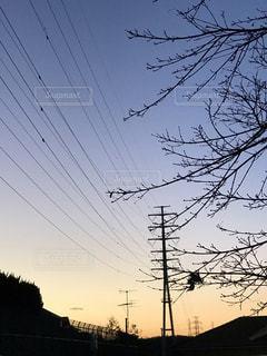 送電鉄塔の夕映えの写真・画像素材[1692893]
