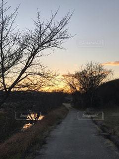 川沿いの道に夕映えの写真・画像素材[1723720]