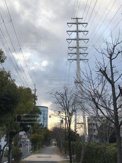 夕暮れの送電鉄塔の写真・画像素材[1730377]