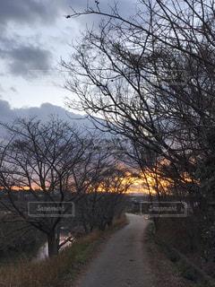 川沿いの道の夕映えの写真・画像素材[1735316]