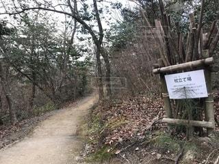 けいはんな記念公園遊歩道の写真・画像素材[1747373]