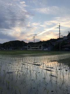 田植えの終わった田んぼと夕映えコラボのアートの写真・画像素材[2169896]