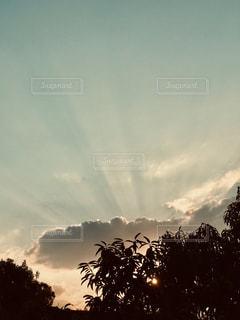 夕暮れの光の美の写真・画像素材[2481696]