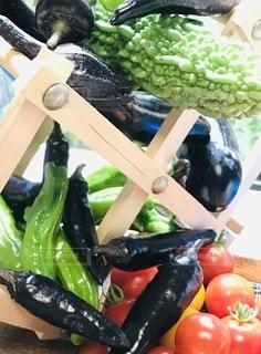 頂き物の野菜の写真・画像素材[3361241]