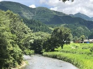 背景の山と木との写真・画像素材[1382361]