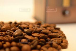 コーヒー豆の写真・画像素材[1581803]