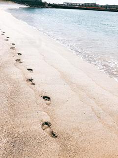 足跡。の写真・画像素材[1380853]