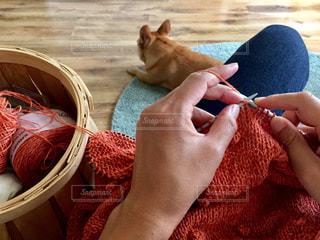 Knittingの写真・画像素材[1382858]