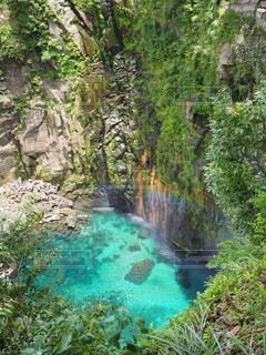 森の中の大きな滝の写真・画像素材[1443907]