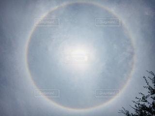 ハロの写真・画像素材[1378639]