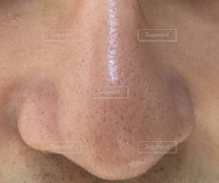 鼻の写真・画像素材[1379074]