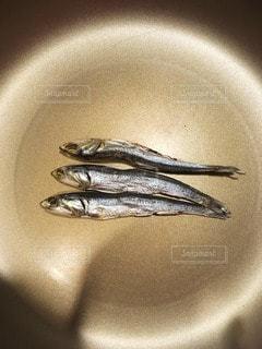 食べ物の写真・画像素材[54828]