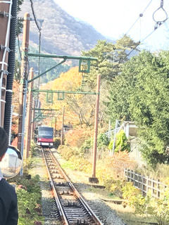 電車と自然の写真・画像素材[1382013]
