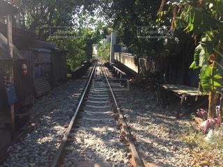 列車は木の脇に駐車します。の写真・画像素材[1379943]