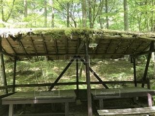 フェンスの横に座っている木製のベンチの写真・画像素材[1380760]