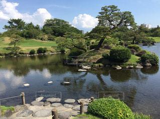 水前寺公園の写真・画像素材[1408393]