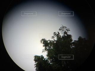 レンズの向こうの写真・画像素材[1413845]