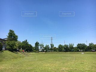 晴天の草原の写真・画像素材[1383175]
