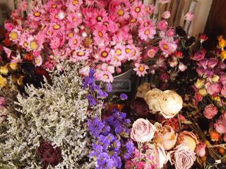 花の写真・画像素材[2477116]