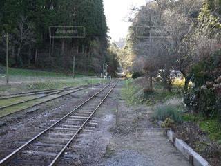 線路の写真・画像素材[1419060]