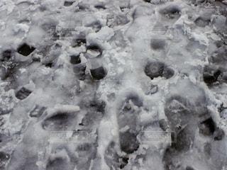 雪に覆われたピザの写真・画像素材[1594886]