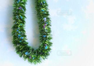 青空と花の首飾りの写真・画像素材[3164828]