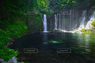 白糸の滝の写真・画像素材[1388704]