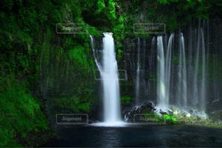 白糸の滝の写真・画像素材[1388705]