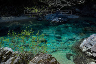 近くに水のプールに大きな岩のアップの写真・画像素材[1388859]