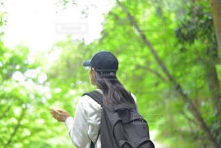 散歩の写真・画像素材[1393218]