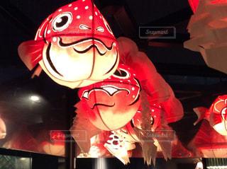 かわいい金魚の提灯の写真・画像素材[1386689]