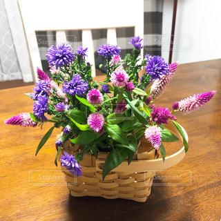 テーブルの上の紫色の花一杯の花瓶の写真・画像素材[1556997]