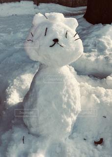 雪だるまの写真・画像素材[1386398]