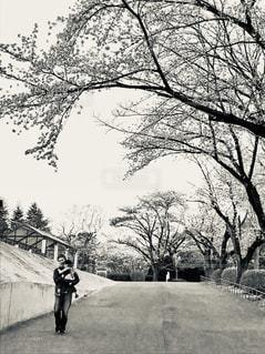 坂道の親子の写真・画像素材[2027189]