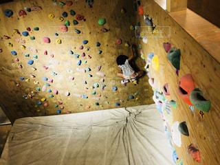 壁を登る子の写真・画像素材[1403991]