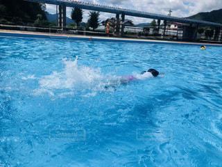 泳ぐ練習の写真・画像素材[1417540]