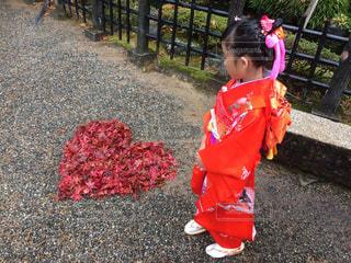 七五三で行った桜山八幡宮の境内にての写真・画像素材[1444992]