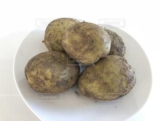 ジャガイモの写真・画像素材[1606529]