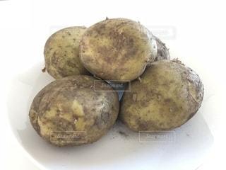 ジャガイモの写真・画像素材[1606530]