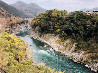 山の中腹に木と岩の多い川の写真・画像素材[1650811]