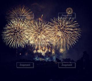 夜空の花火の写真・画像素材[1385473]